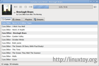 Sonata 1.3 屏幕截图