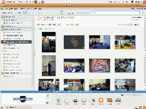 Picasa 3 for Linux