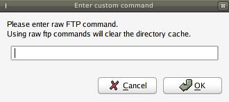 filezilla custom     command